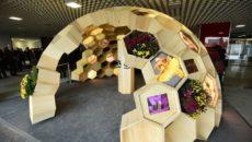 bee-world-pavilion
