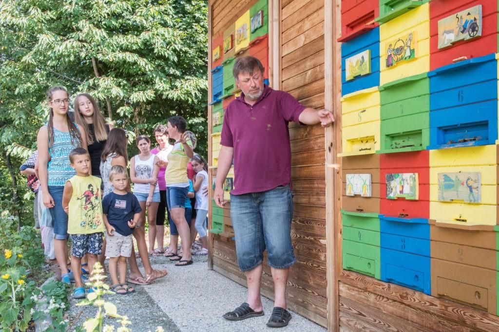 Beekeeping centre of gorenjska apiturizem apiturizem for Salon apiculture